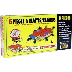 Sticky Box pieges a Blattes et Cafards